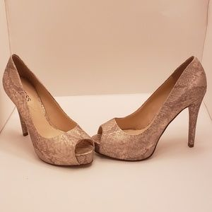 Guess Gold Cream & Taupe Snake Skin Print